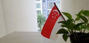 Mini Singapore