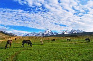 A scenery in my dream