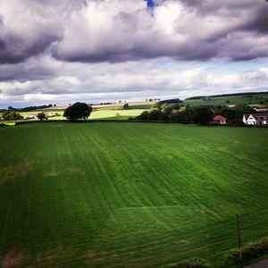 Scotland, you beauty!