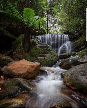Hidden Gem of Blue Mountains, NSW, Australia