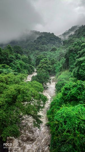 Monsoon escape