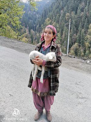 Jibhi - Jalori Pass