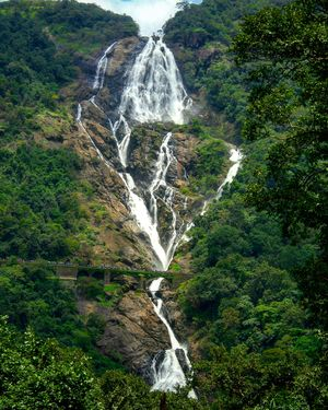 Never believed nature can be so beautiful until I saw Dudhsagar waterfall. #tripotocommunity