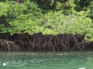 Hiddend Gems of Andaman island