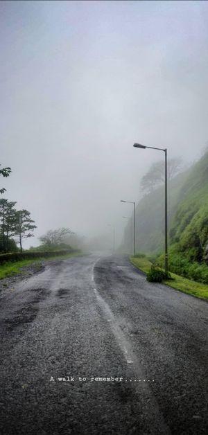 Mist Walks