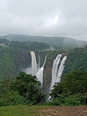 JOG FALLS - Jog is located in Sagar taluk in Shimoga district of Karnataka state, India. The famous