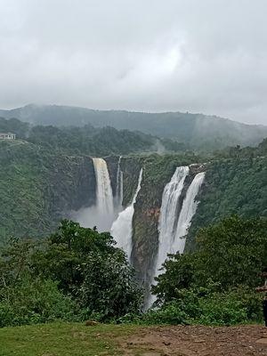 JOG FALLS - Jog is located in Sagar taluk in Shimoga district of Karnataka state, India. The famous