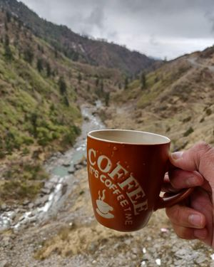 Coffee with a view. Enroute nathula