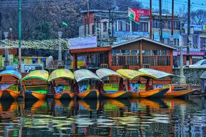 Dal Lake: Life Floats on Water Here
