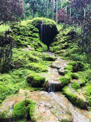 Trouvaille: - A feel I felt at Seethamvana falls
