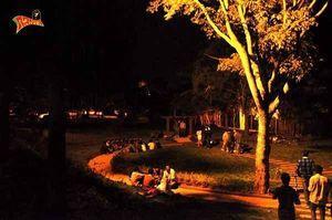 Mysore - Bangalore Road 1/undefined by Tripoto