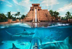 Top 6 water-parks in UAE