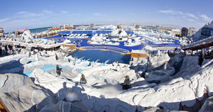 Ice Land Water Park - North Ras Al Khaimah - United Arab Emirates 1/undefined by Tripoto