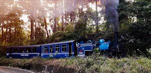 Toy train, Siliguri