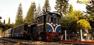 Toy Train (DHR)