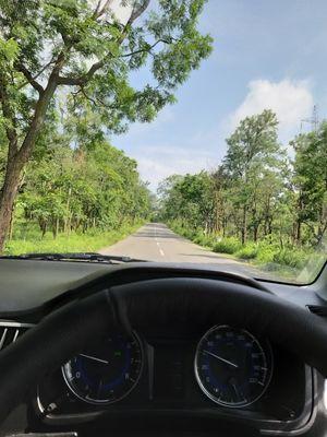 Exploring The Nalla Malla Forest Reserve