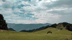 Rhetorical stepping into Shimla and Kullu