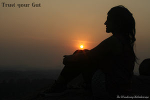 Trust your Gut | Rajasthan Chronicles