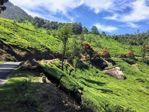 This September Add Munnar To Your Memories #memories #westernghats