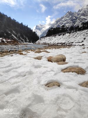 Snow covered Yumthang Valley North Sikkim