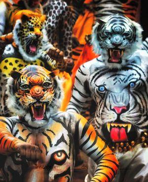 'Pulikali' The art of Kerala folk Dance to the Village - Tiger Dance