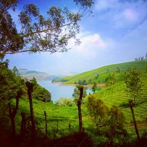 Ooty,India