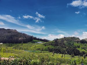 Kotagiri - A place you would love to get lost in!  #SouthIndiaSurprise