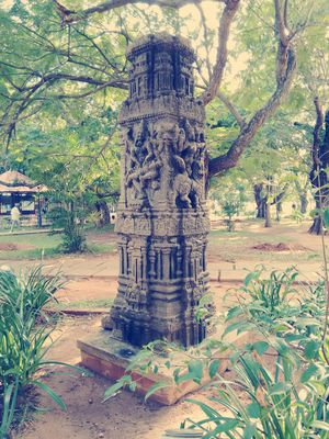 Bharathi Park 1/7 by Tripoto
