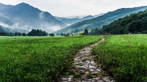 Enjoying solitude at Karsog Valley