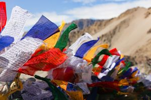 Are we on the verge of ruining Ladakh - too much tourism hurts
