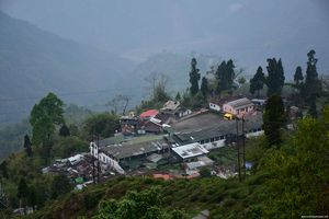 This quaint village in the middle of tea gardens is the best place to spend a weekend