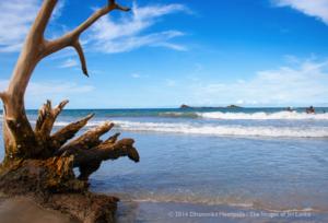 Nilaveli Beach 1/undefined by Tripoto