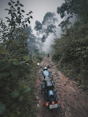 URUMBI TRAILS