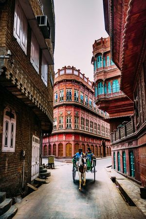 Bikaner - Zogotro   Travel Blog Of India