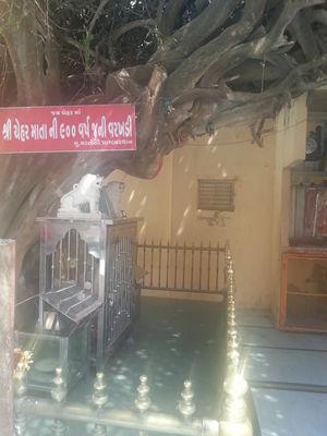 Shree Chehar Mataji Temple 1/3 by Tripoto