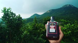 Nature and Old monk