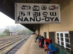 Nanu Oya Railway Station 1/undefined by Tripoto