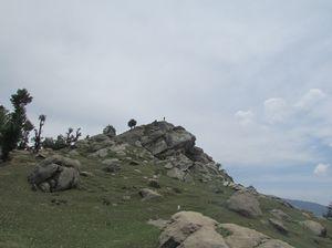 churdhar   moderate trekk   must to travel