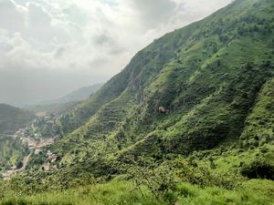 Local's Delight : Karol Trek (Solan)