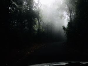 #agumbe is the most wonderful place at the time of monsoon