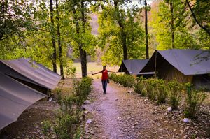 Camping in Sattal : A great place to relax amidst nature