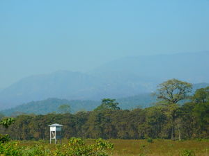 Buxa Tiger Reserve with it's captivating charm