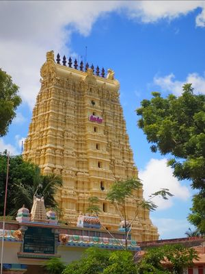 """Explore the pillars and corridors in Ramanathaswamy Temple"""