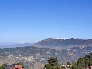 Almora Locals 200+ year old