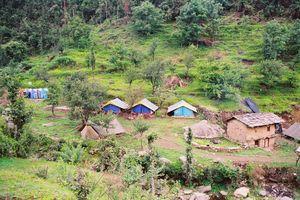 Backpacking in Nohradhar, Himachal Pradesh