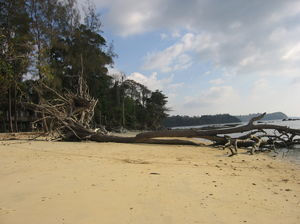 Must visit places in Andaman islands