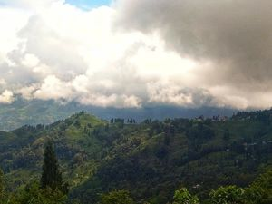 The serene and peaceful Tinchuley - Darjeeling district
