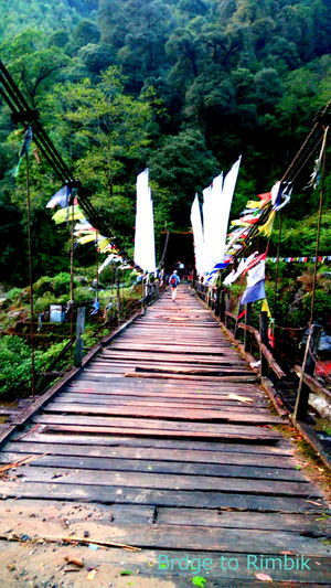 Sandakphu Diary-Confessions of a solo traveler