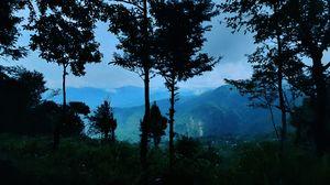 A week In Lava Lolegaon (Kalimpong)