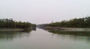 Sunderbans: The Ban of Tigers